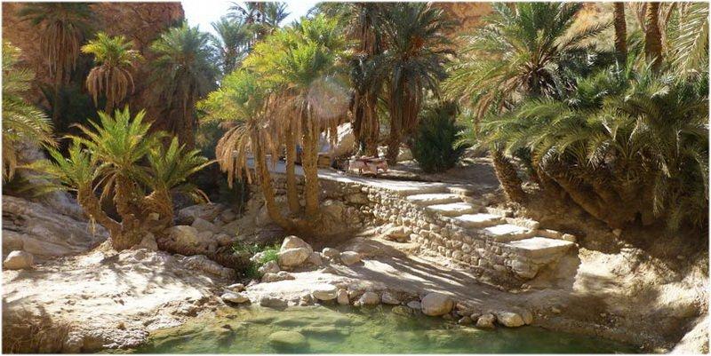 voyage tunisie gabes